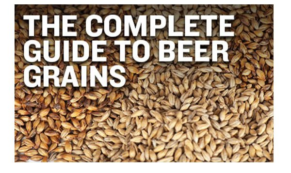 Beer Grains: The Complete Guide for Homebrewers