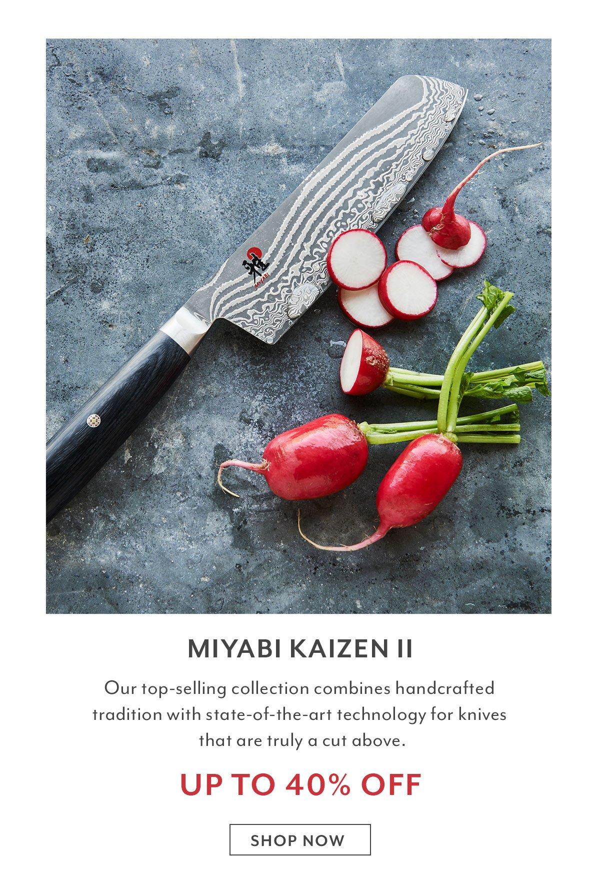 Miyabi Kaizen II