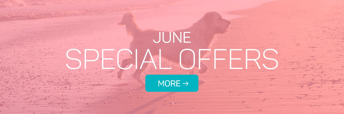 Special Offers for June!