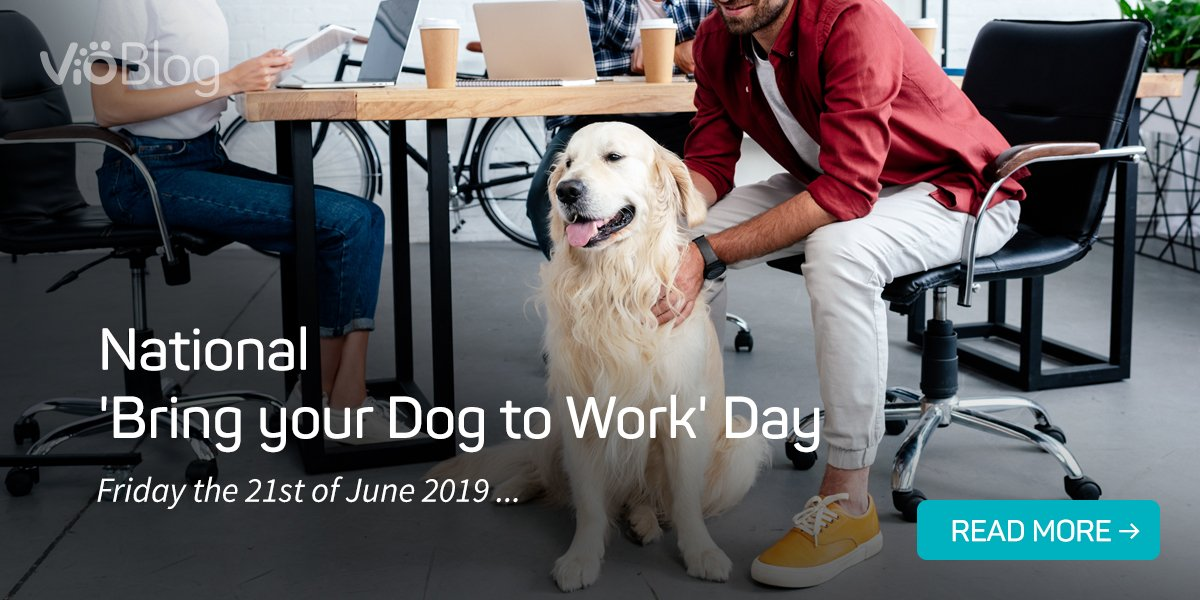 National bring your dog to work day!