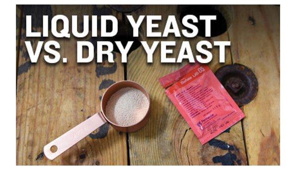 Dry Yeast vs. Liquid Yeast
