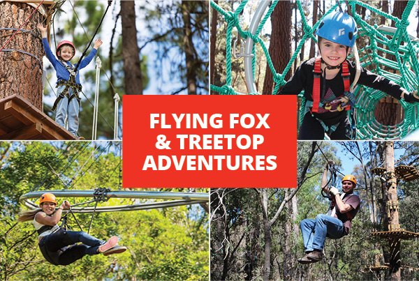 Flying Fox & Treetop Adventures