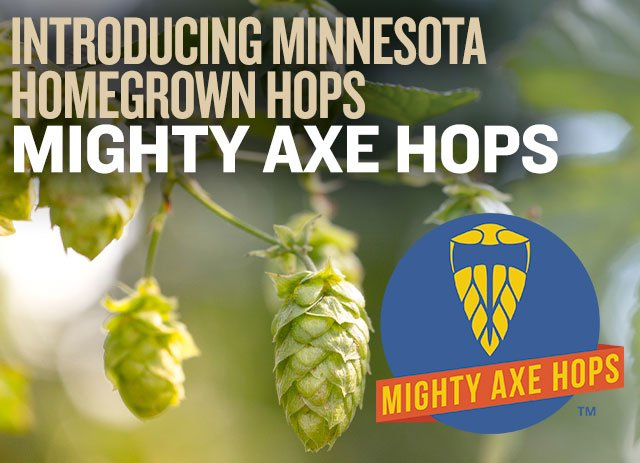 Introducing Minnesota's Own Homebrown Hops