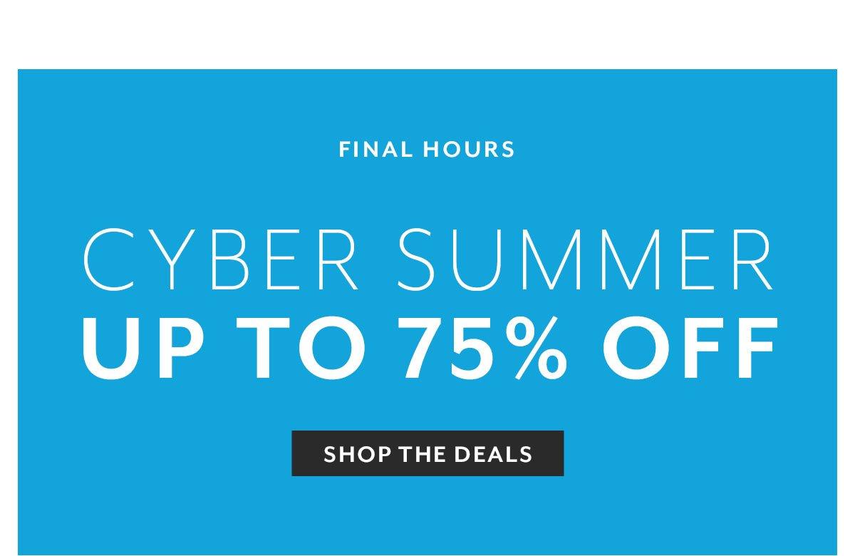 Cyber Summer • Final Hours