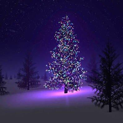 Colorful Firefly Solar mini LED Christmas Lights On Strings