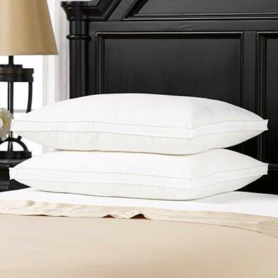 2 Pack Overstuffed Luxury Plush Med/Firm Gel Filled Side/Back Sleeper Pillow