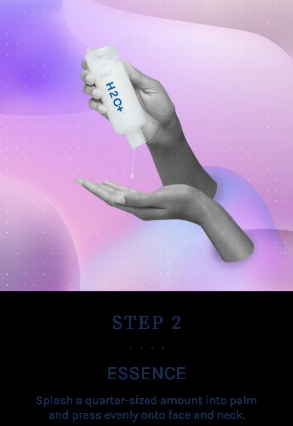Step 2. Essence