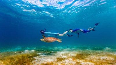 Cancún y Tulum