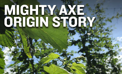 Mighty Axe Origins Story