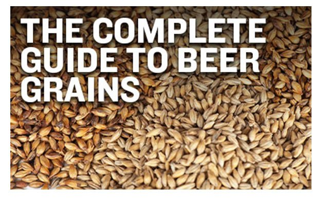 The Complete Guide to Beer Grains