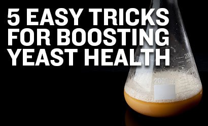 5 Easy Tricks for Boosting Yeast Health