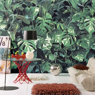 Free Shipping: Wall Murals & More