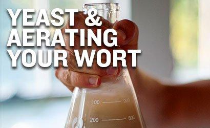Yeast & Aerating Your Wort