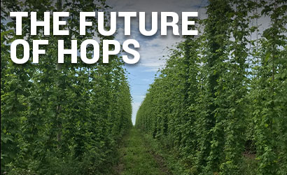 The Future of Hops