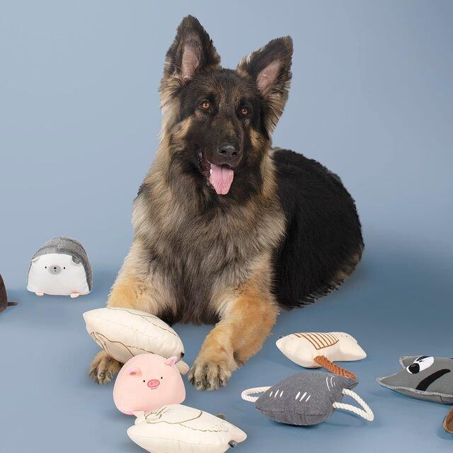 So Fetch: Pet Toys, Bowls, Decor & Beds