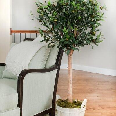 Free Shipping: Faux Plants & Planters