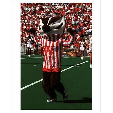 Image of Bucky Badger Poster