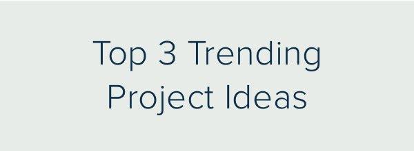 Top 3 Trending Project Ideas