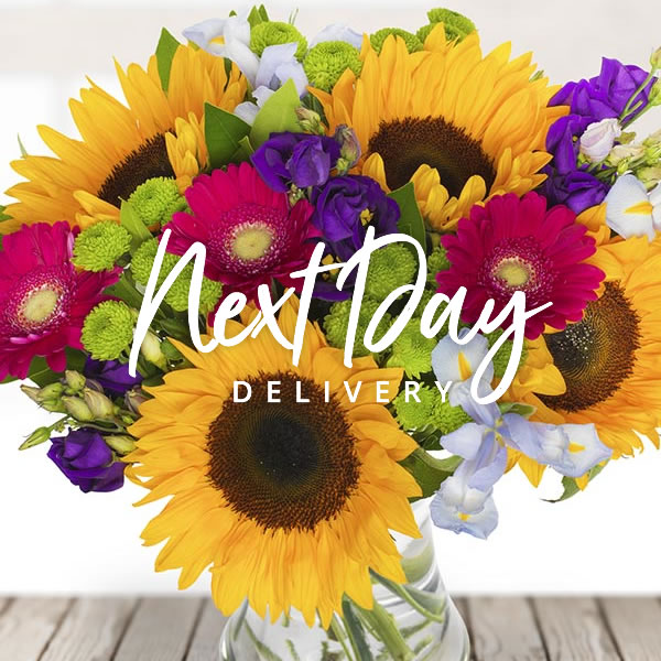 Eflorist Uk 10 Off Next Day Flowers Milled