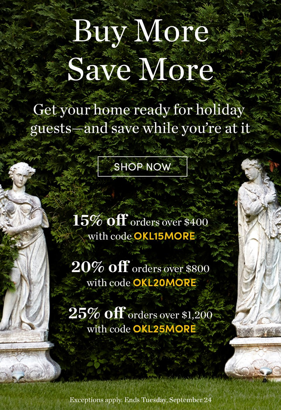 Buy More Save More | 15% Off | 20% Off | 25% Off | Shop Now