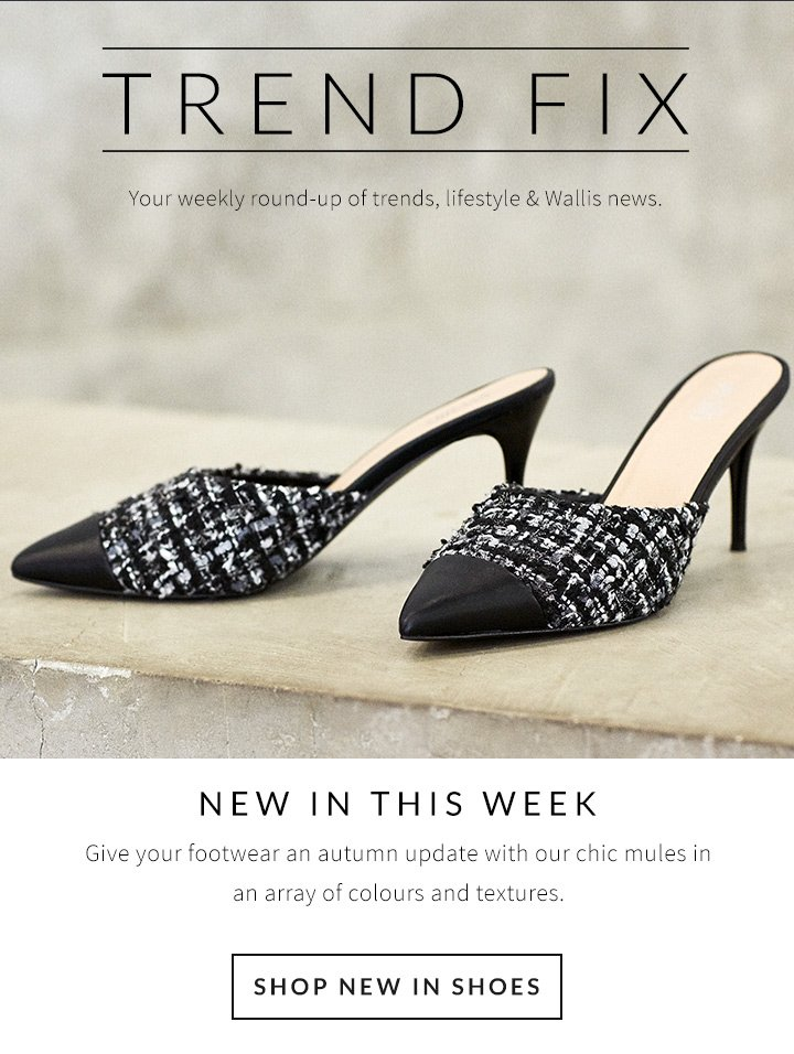 Wallis: New in shoes, knitwear and more