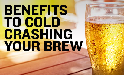 Cold Crashing Beer for Crystal Clear Homebrew