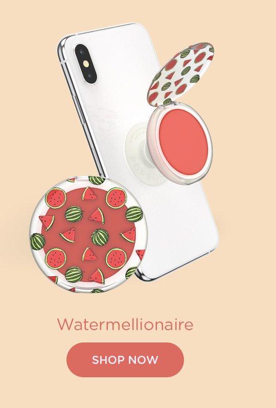 Shop Watermellionaire