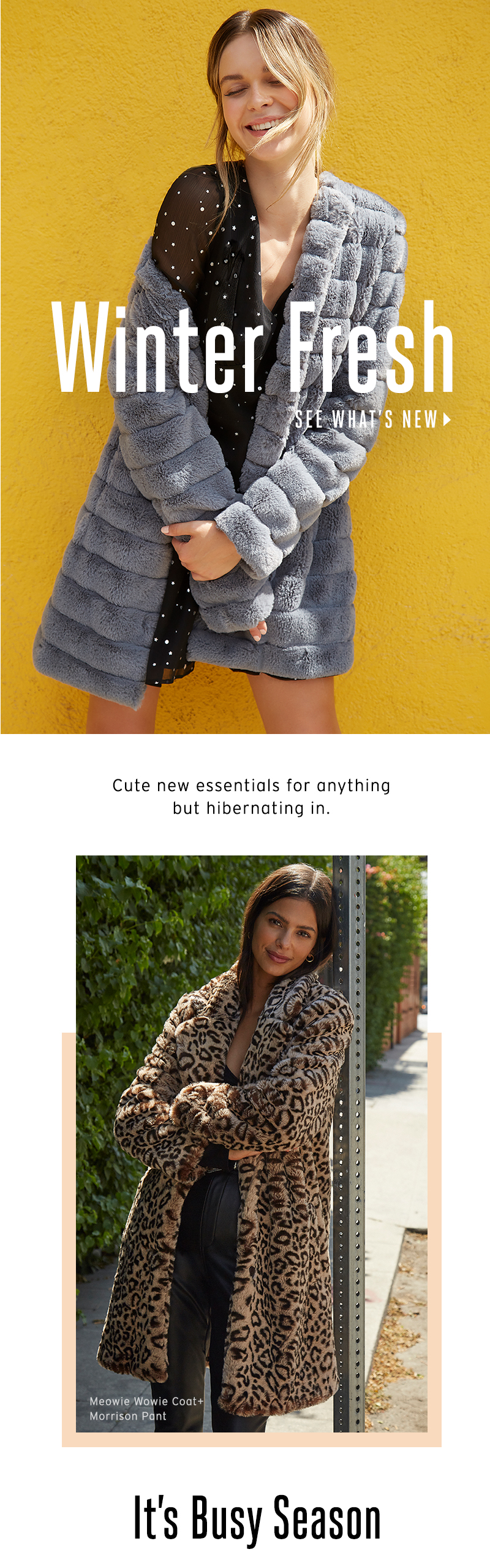 Winter Fresh. Cute new essentials for anything but hibernating in. See What's New.