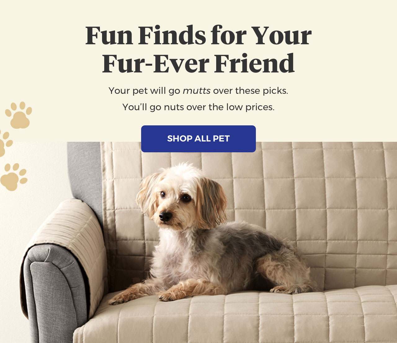 Bed Bath And Beyond Paws What You Re Doing And Shop These Pet Picks Milled