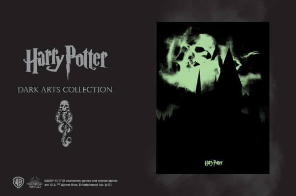 HARRY POTTER: DARK ARTS COLLECTION <br>LIMITED EDITION SCREEN PRINT!