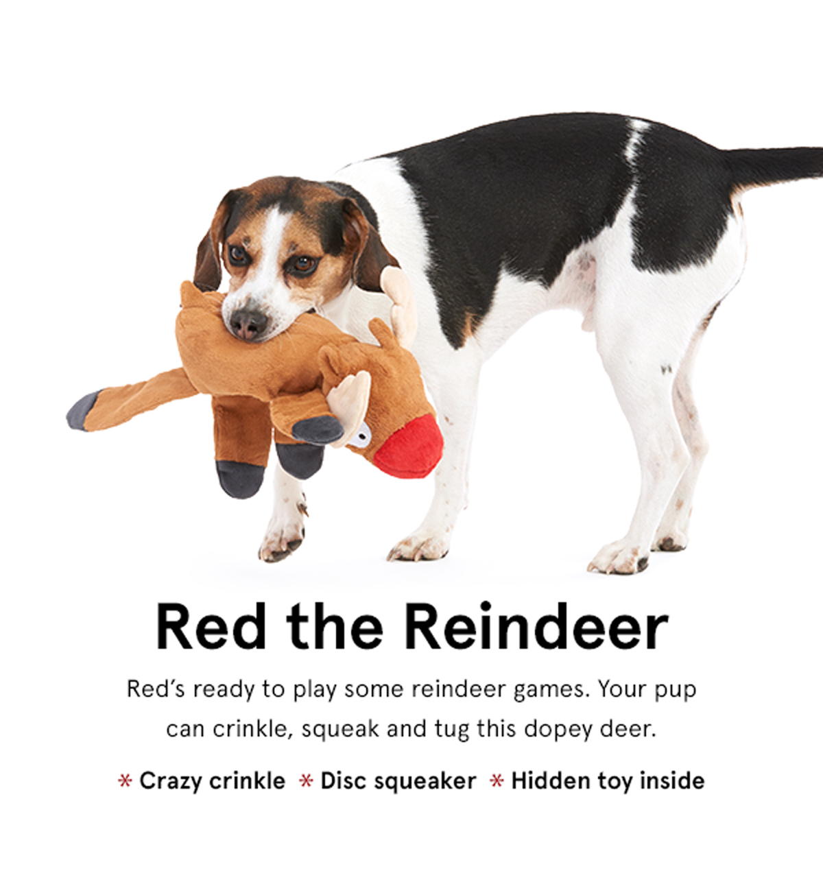 Red the Reindeer