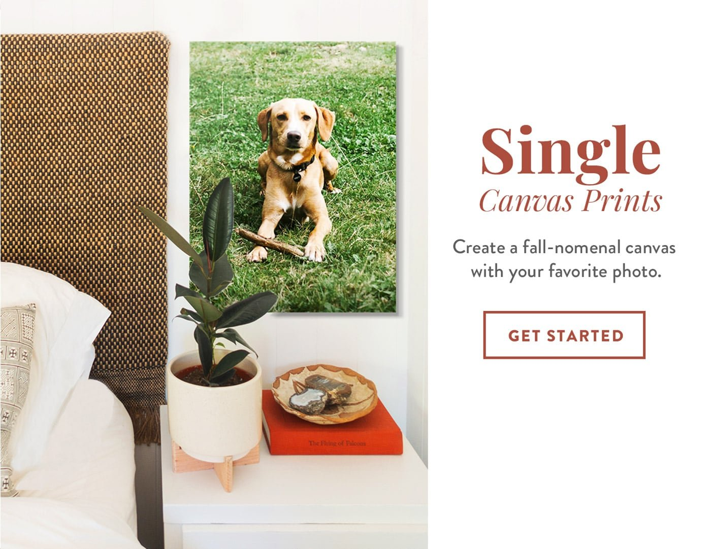 Single Canvas Prints   Create a fall-nomenal canvas with your favorite photo   GET STARTED