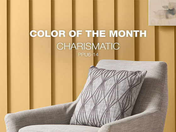 Color of the Month: Charismatic PPU6-14