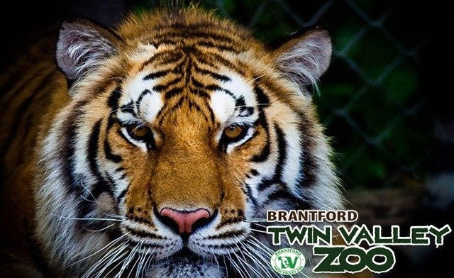 Twin Valley Zoo Admissions