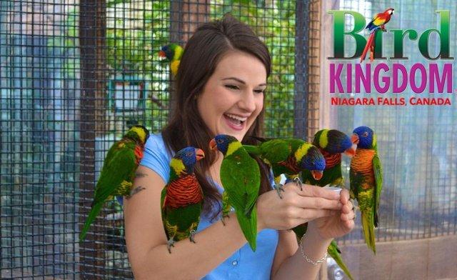 Admission to Bird Kingdom