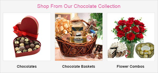 Shop From Our Featured Collection