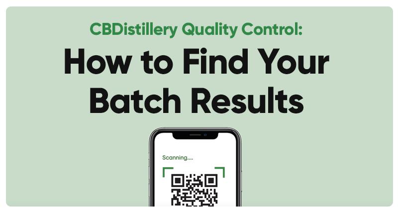 Find Batch Results