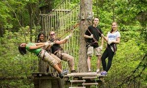 Treetop and Zipline Adventure