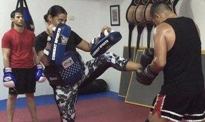 Muay Thai Private Training