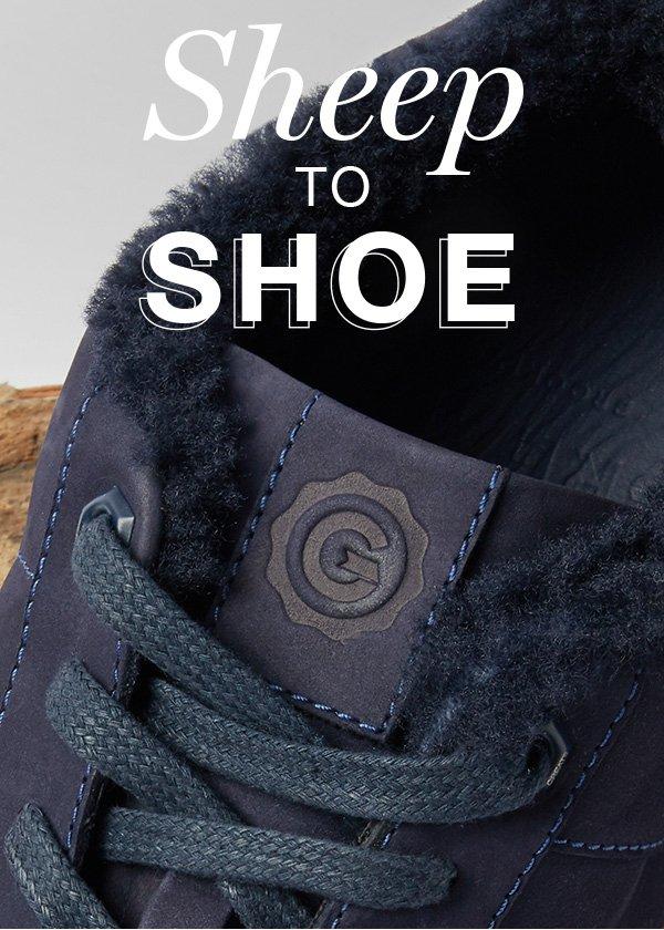 Sheep to Shoe