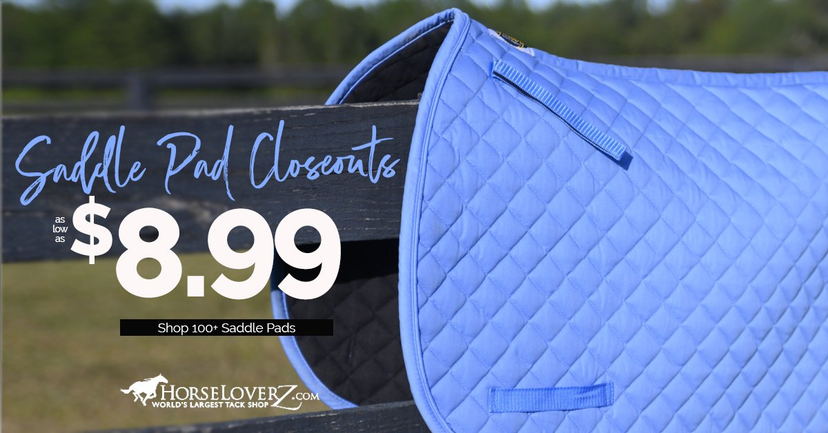 100+ Saddle Pads as low as $8.99