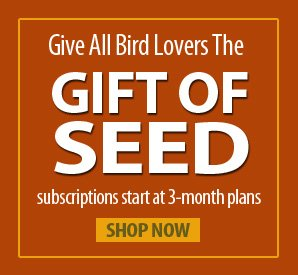Seed-by-the-Month Gift Subscription!