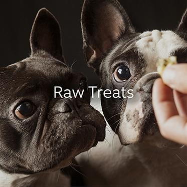 Shop Raw Treats