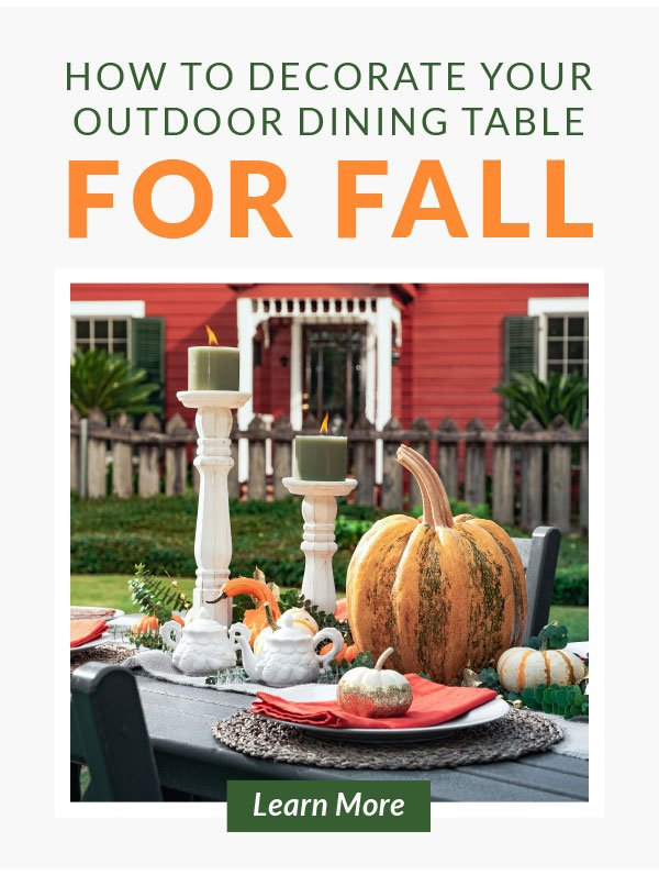 How to decorate your dining table for fall