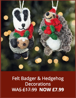 Felt Badger & Hedgehog Decorations WAS £17.99  NOW £7.99