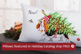 Pillows in Catalog Ship Free