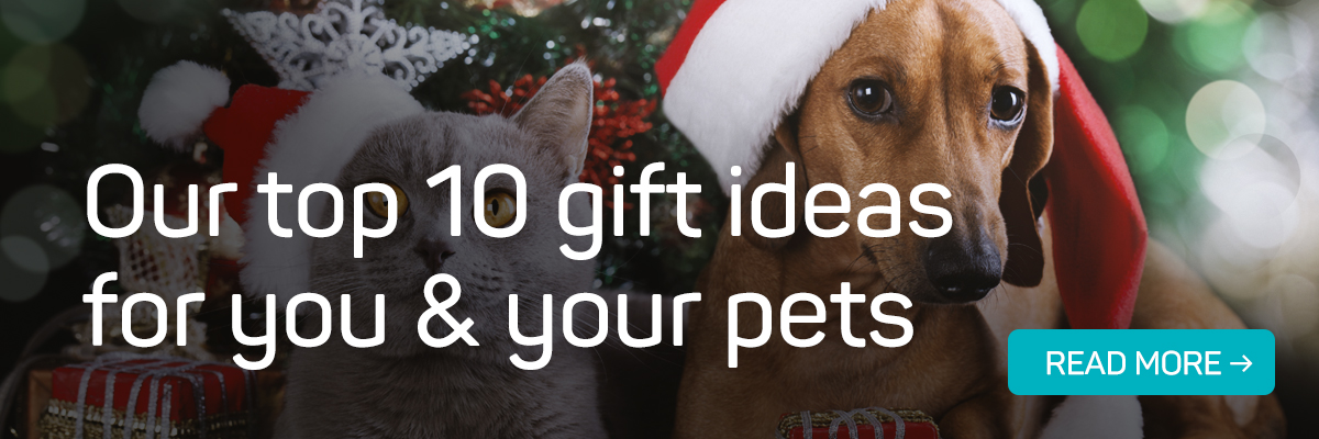 Read our Christmas gift guide!