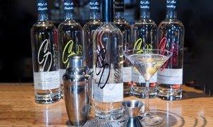Up to 67% Seasonal Martini Making Class