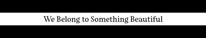 We Belong to Something Beautiful