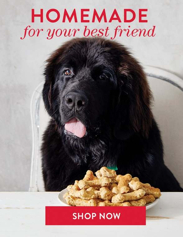 Homemade Treats for Your Pup